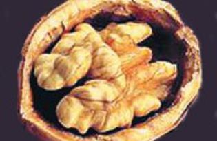 Грецкие орехи. Калорийность, польза и вред