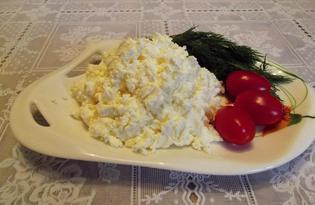 Сыр творожный. Калорийность, польза и вред