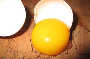 Желток яичный. Калорийность, польза и вред