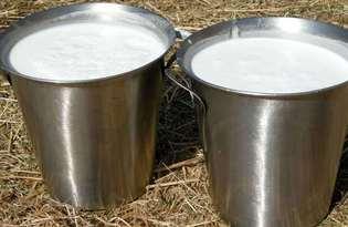 Молоко фермерское. Калорийность, польза и вред.