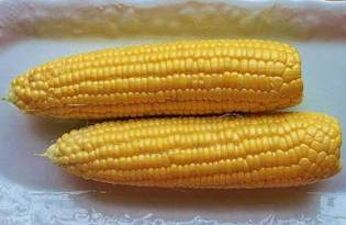 Кукуруза. Калорийность, польза и вред.