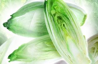 Цикорий салатный. Калорийность, польза и вред.
