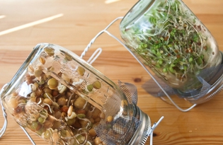 Проросшие зерна ржи. Калорийность, польза и вред.
