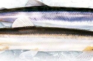 Рыба мойва. Калорийность, польза и вред.