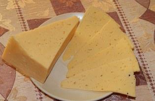 Сыр. Калорийность, польза и вред.