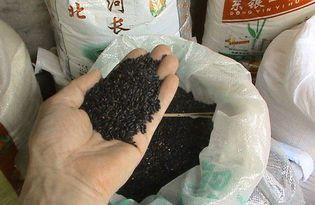 Рис черный. Калорийность, польза и вред.