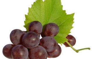 Виноград Изабелла. Калорийность, польза и вред.