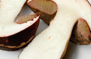 Белый гриб (боровик). Калорийность, польза и вред.