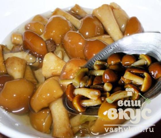 Жареные грибы польза и вред