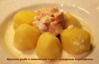 Красная рыба в сметанном соусе (пошаговый фото рецепт)