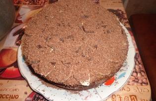 Медовый бисквит в мультиварке (пошаговый фото рецепт)