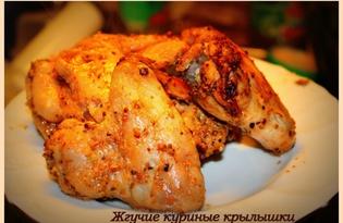 Жгучие куриные крылышки (пошаговый фото рецепт)