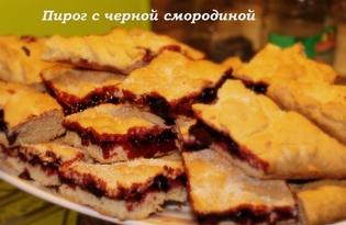 Пирог с черной смородиной (Термомикс) (пошаговый фото рецепт)
