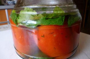 Малосольные помидоры (пошаговый фото рецепт)