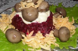 """Салат со свеклой и сыром """"Грибная поляна"""" (пошаговый фото рецепт)"""