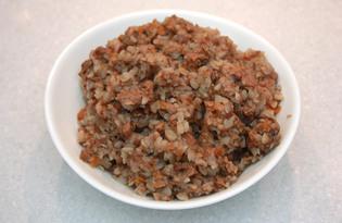 Гречка с говядиной и грибами в мультиварке Redmond M-4502 (рецепт с пошаговыми фото)