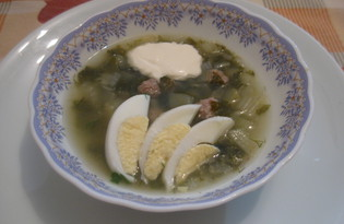 Суп с сельдереем и щавелем (пошаговый фото рецепт)