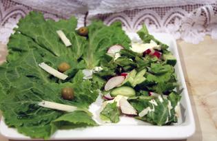 """Салат весенний с сыром """"Манчего"""" (пошаговый фото рецепт)"""
