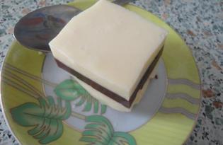 Желе молочно-шоколадное (рецепт с пошаговыми фото)