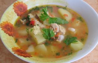 Куриный суп с болгарским перцем и помидорами (пошаговый фото рецепт)