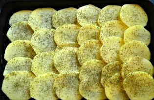 Запеканка с картофелем и мясным фаршем (пошаговый фото рецепт)