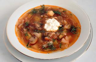 Щи вегетарианские с грибами и чечевицей (пошаговый фото рецепт)