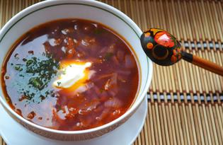 Щи с краснокочанной капустой (пошаговый фото рецепт)
