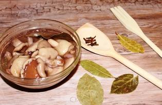 Маринованные маслята (пошаговый фото рецепт)