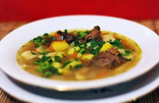 Суп-лапша из оленины по-северному (пошаговый фото рецепт)