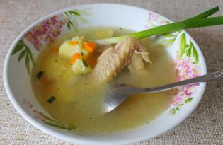 Суп из домашней курицы в мультиварке (пошаговый фото рецепт)