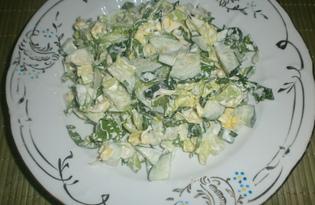 Салат с огурцом и капустой «Весенняя нежность» (пошаговый фото рецепт)
