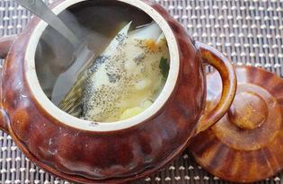 Рыбный суп из щуки в горшочках (пошаговый фото рецепт)