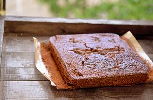 Шоколадный бисквит на кефире (пошаговый фото рецепт)