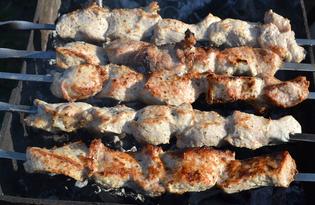 Маринад с майонезом для шашлыка из свинины (пошаговый фото рецепт)