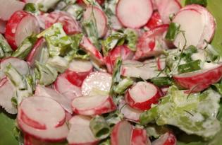 Салат с редисом и зеленью (пошаговый фото рецепт)