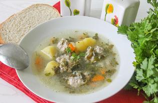 Суп с щавелем и куриными фрикадельками (пошаговый фото рецепт)