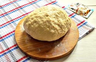 Дрожжевое тесто на растительном масле и майонезе (пошаговый фото рецепт)