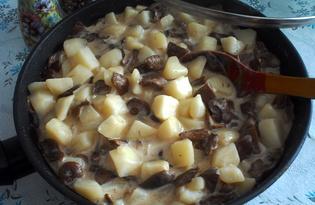 Лесные грибы тушеные в сметане с картошкой (пошаговый фото рецепт)