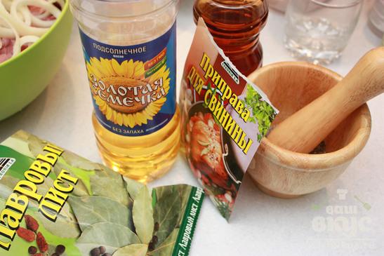 Свиной шашлык в маринаде из яблочного уксуса