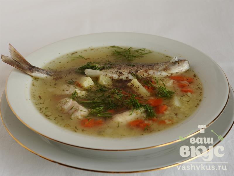как приготовить рыбный суп из речной рыбы дома
