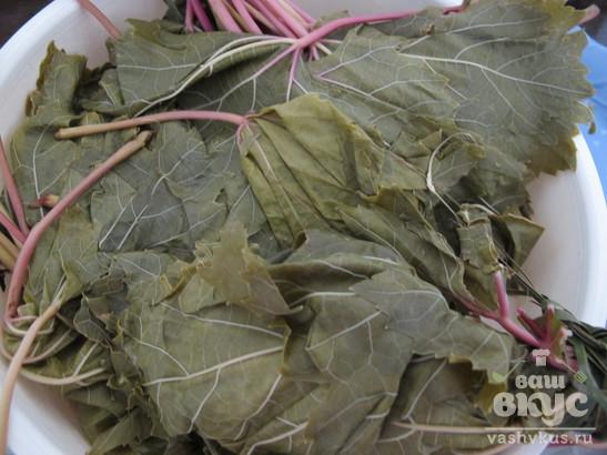 Махши (Mahshi) из виноградных листьев