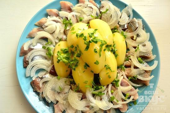 Закуска из сельди и вареного картофеля